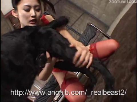 Японка в красных чулках и лифчике захотела секса с собакой